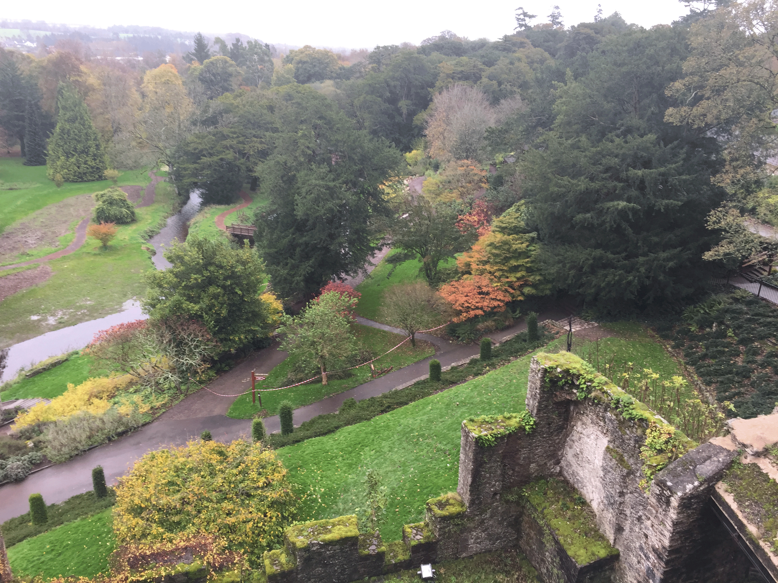 The Art of Love & Money - Blarney Castle View from the top-Ireland